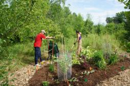 Six volunteers and two wheelbarrows added the mulch to the garden & path